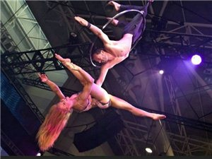 实拍2013悉尼性文化节:令人大开眼界