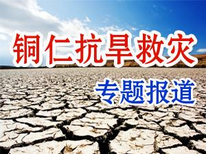 众志成城•抗旱救灾