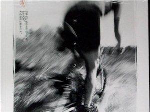 小说连载-马贼-王若虚著(已完结)