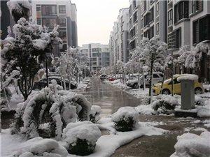 澳门拉斯维加斯娱乐的这次大雪!