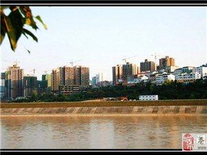 见证江南新区成长――建设中的江南新区[图片报道]