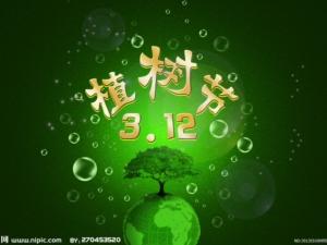 2014年3月12日植树节