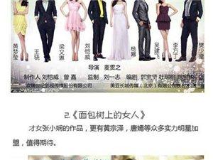 2013必追电视剧指南(内地篇)