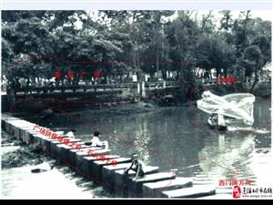 老蓬溪的记忆