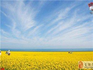 [原创]2013年7月,去中国最美的湖(青海湖)―流火七月相约醉美青海