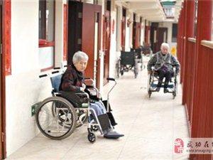 [分享]从今天起不常回家看老人算违法