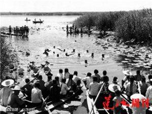 白洋淀70年代老照片