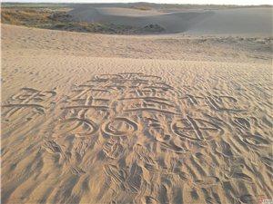 【活动公告】万博manbetx客户端苹果单车基地7月7日活动公告感受乡间风情————草湖行