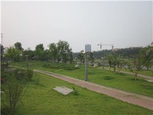 夏日滨河公园实拍
