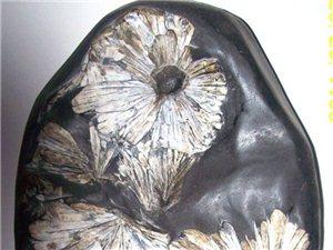三峡奇石收藏