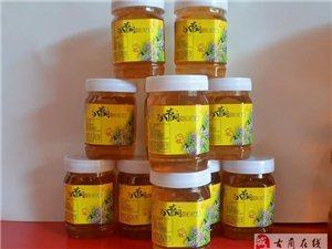 郎乡特产 古蔺黄荆 八节洞牌荆条花土蜂蜜上市了欢迎大家订购!
