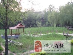义马生态公园