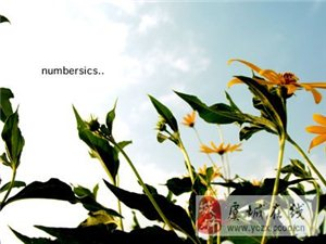 [分享]花