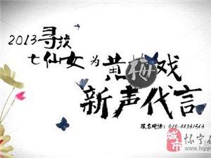 """央视""""寻找七仙女"""" 只为黄梅戏出新人"""