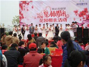 乐帮婚恋――2013 扶绥第一届集体婚礼