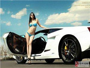 关于汽车的经典话语 ——爱车的你一定得看看!