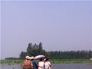畅游微山湖岛