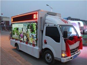 LED视频婚礼车