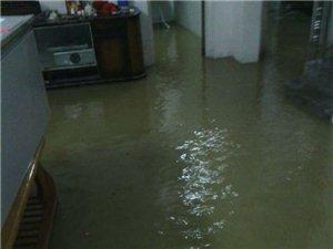 揭西老家今天又闹水灾,龙潭近百乡户农民遭受巨大财富损失。。哎天灾啊。。