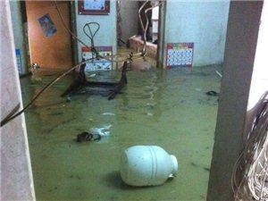 揭西老家今天又�[水�模���潭近百�l�艮r民遭受巨大�富�p失。。哎天�陌
