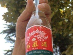 西凤酒内惊现一只蜘蛛 白酒泡蜘蛛你敢喝吗?