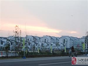 美丽泗洪我的家――美景看不够