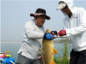 出大鱼了,三人同搏15斤巨鲤