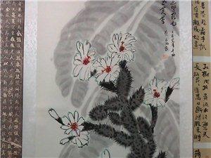 画一幅很少有人画的仙人掌