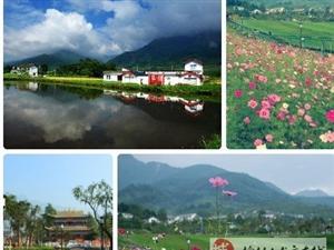 [分享]周末,�g迎大家�砭d竹旅游!!!