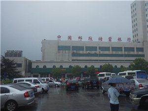 博亿娱乐冬泳队参加第五届中国荆门漳河游泳节