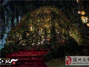 《白狐》发激情版预告 三大床戏密集曝光