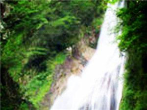 神农谷国家森林公园介绍