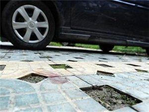 奶奶倒车时孙子从副驾跌出车外被碾死