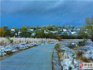 今年下的第一场雪