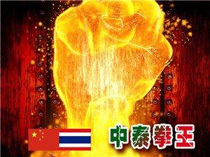 11.11武林风中泰拳王对决赛内黄站
