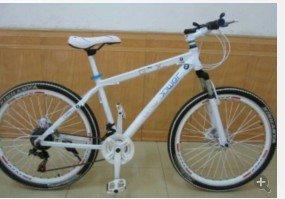 销售山地自行车,死飞车