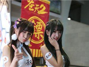 香港�W博��:旗袍美女很吸睛