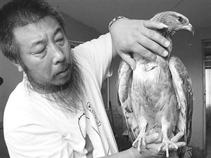 唐山环保志愿者:2013护鸟在行动(组图)