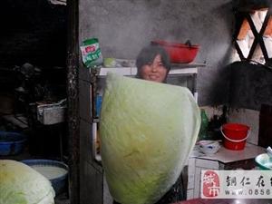 【铜仁十大特色小吃】锅巴粉