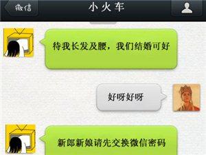 2013年新结婚证词走红网络