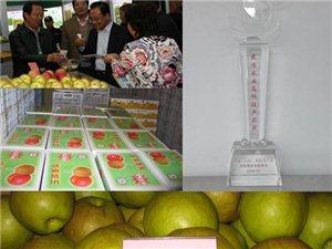 山西789彩票酥梨、苹果、玉露香梨