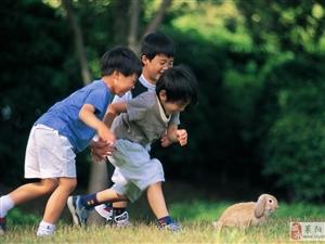 孩子是爱情的结晶
