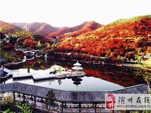 红叶线路5期 自由人部落11月2日济南红叶谷浪漫红叶游