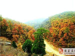 探秘野三坡红叶大峡谷