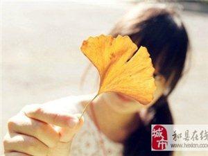 秋是第二个春,此时,每一片叶子都是一朵鲜花!太美了!