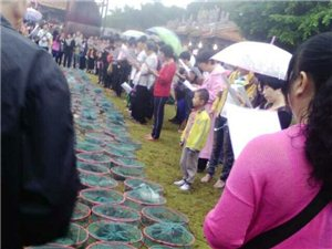 鸟类野生动物放生活动昨天下午在青龙古庙举行