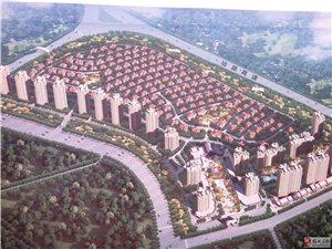 丰顺碧桂园规划图