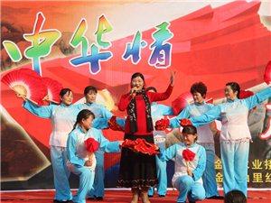 新中华情-山里红艺术团走进金寨县希望小学