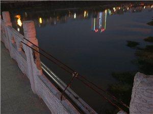 危险――――-老一中门前大桥护楠损害