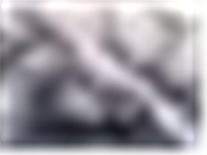 五十米《丰阳览胜图》局部